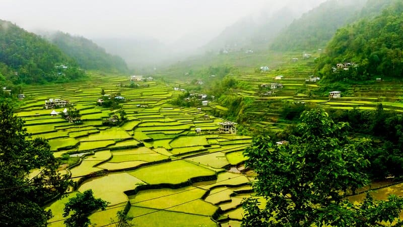 Hiking the Rice Terraces of Banaue Philippines
