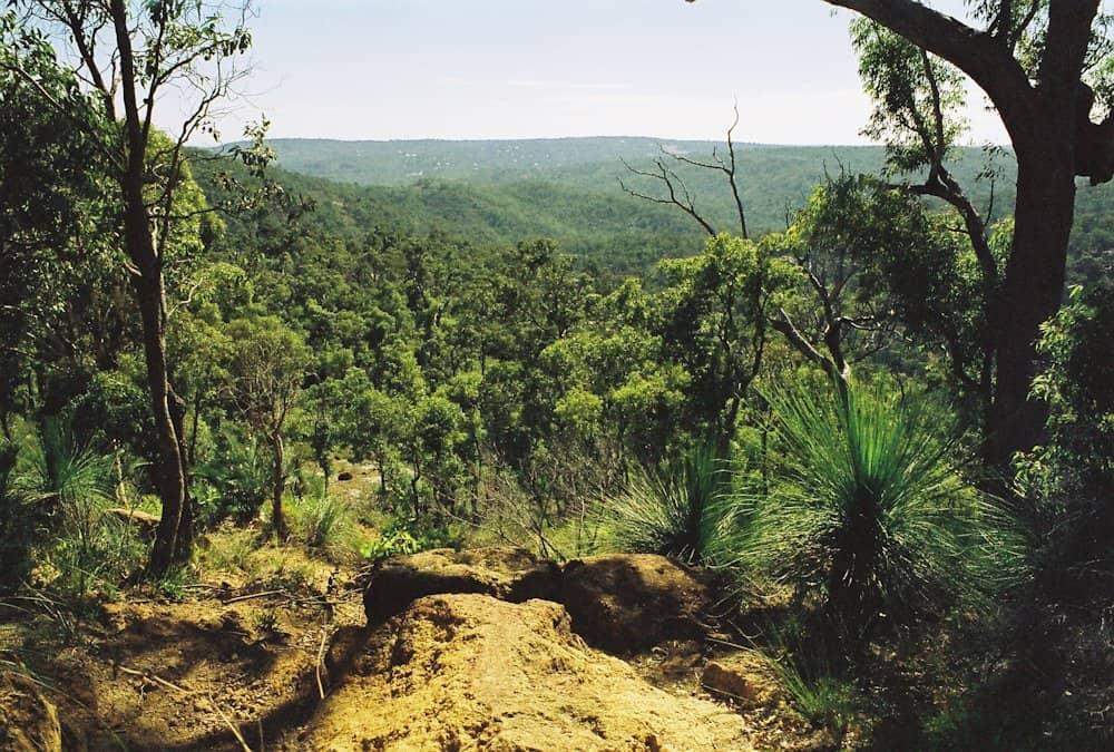 Bibbulmun-Track-3